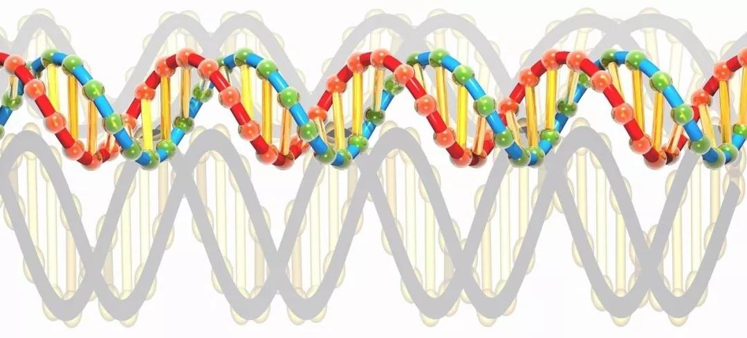 成长基因检测丨抽血检测遗传代谢病,用药安全等,助力宝宝健康成