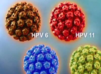 hpv疫苗在美国叫停?谣言止于智者!