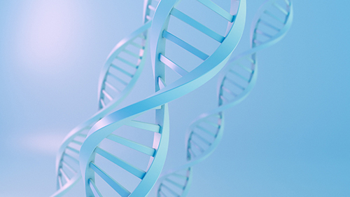 机智如安吉丽娜·朱莉,基因检测