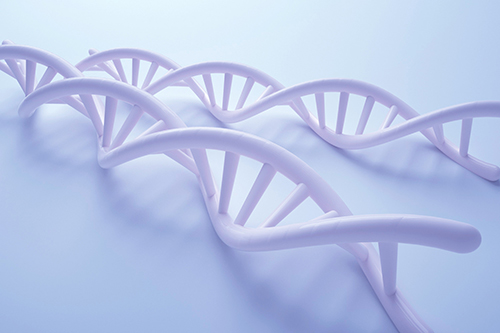 香港无创DNA检测时间是什么时候